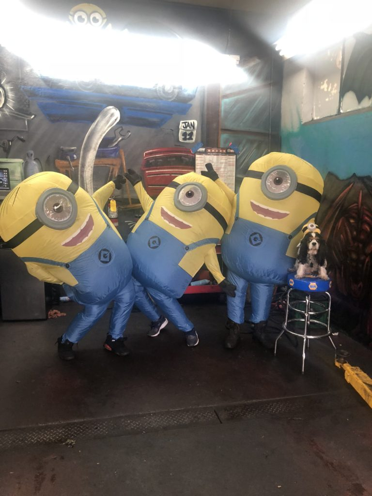 The Master Mechanic team dresses up as Minions for halloween